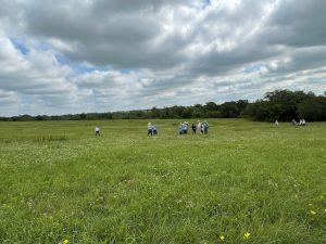 Quebe Prairie field group