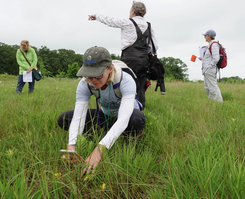 Your donation at northtexasgivingday.org/npat, now through Sept. 23rd, will support NPAT's outreach and land stewardship efforts in North Texas. Plus, every dollar up to $3,500 will be matched!